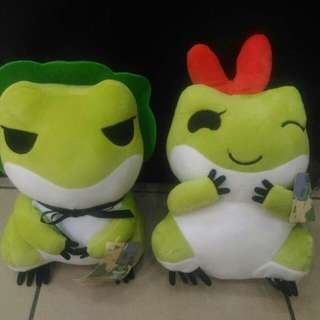 Travel frog with his girl friend