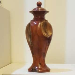 🚚 天然台灣龍柏花瓶