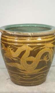 drogon small pot,bird big pot