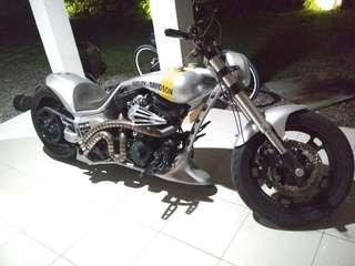 Harley costum