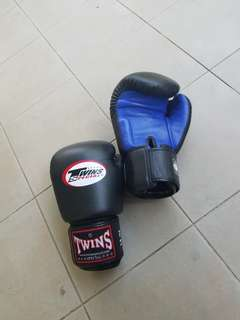 Twin Special Boxing gloves