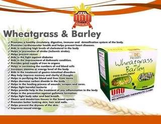 Wheatgrass and Barley