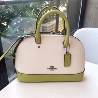 Coach Mini Sierra Satchel - green x white