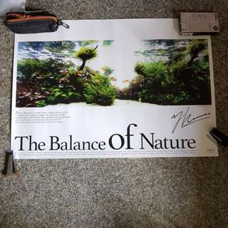 Nature Aquarium - The Balance of Nature ADA Poster