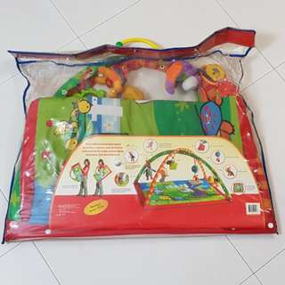 BABY PLAY MAT/ ACTIVITY GYM