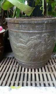 Dragon pot dia 33cm x1