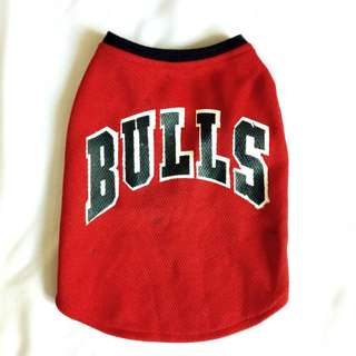 [FOR DOGS] Bulls Jersey