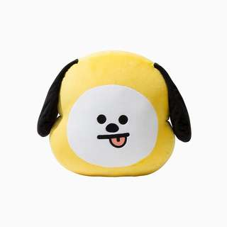 BT21 made by BTS Line Friends Unofficial Plushie