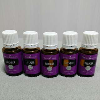 Young Living EO - Lavender