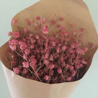 Pink Baby Breath Bouquet