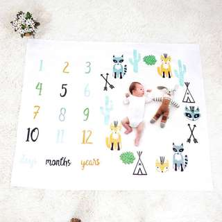 Monthly Baby Blanket, Baby Photo Background, Baby Photo Props