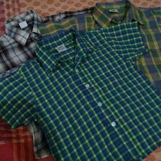 Checkered Polo Shortsleeves