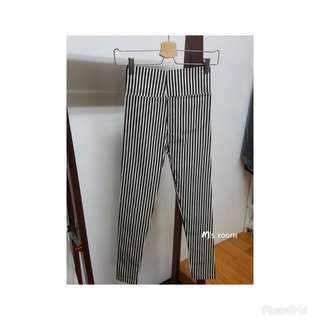 🚚 高腰挺版直條紋內搭褲