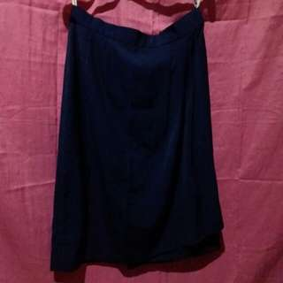 🍂A-Line Silk Skirt