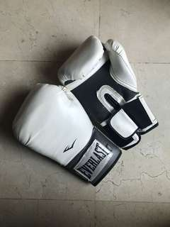 Everlast Boxing Gloves 14oz