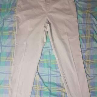 PLUS SIZE SPANDEX PANTS (UNIQLO)