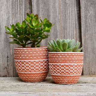 Terracotta and White Patterned Plant Pot Planter
