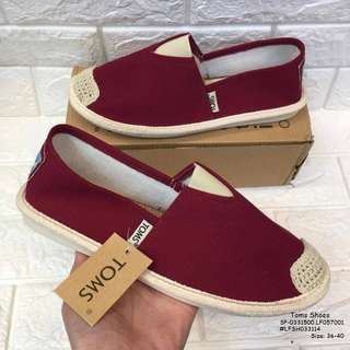 Toms shoes size : 36-40