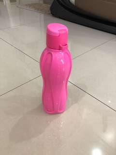Tupperware Candy Pop Eco Bottle (500 ml)