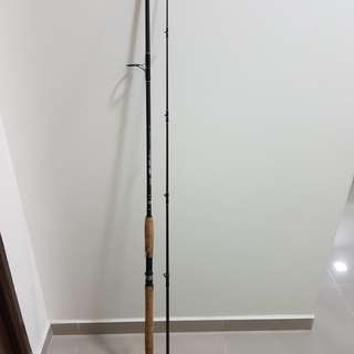 Pioneer Solitaire SPW-9 spinning rod.