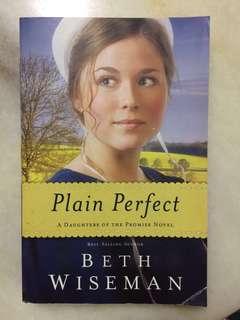 🆕English Novel: Plain Perfect