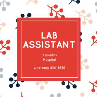 JOB: Part-time Lab Assistant (3 months, Hospital, $7.50/hr) *Good exposure!!*