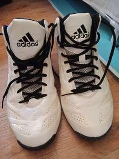 Adidas Hicut