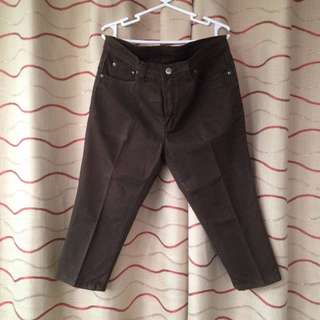 Size 31 Brown Capri Pants (TOKONG)
