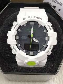 GA-800 MIDSIZE GSHOCK WATCH