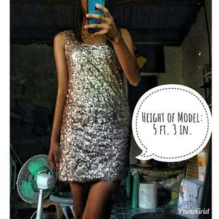 Bodycon Dress (Sequins)