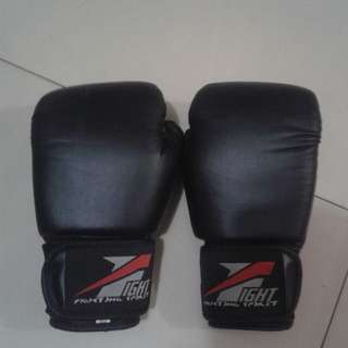 Boxing Gloves with free hand wraps