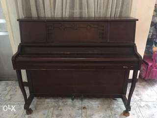 Trebel vertipremium piano