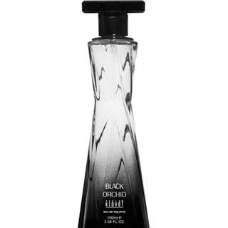 Black Orchid - Womens Perfume