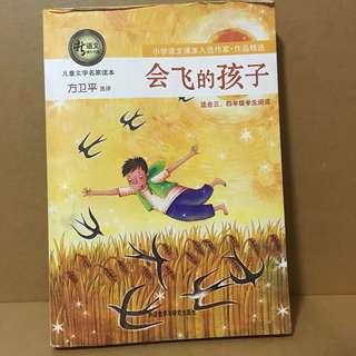 Chinese Book 会飞的孩子