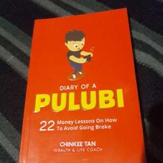 Diary of a Pulubi - Chinkee Tan