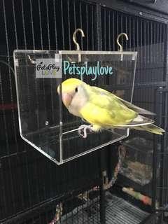 Parrot bathtub