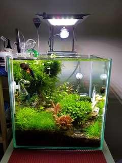 Nemolight AquaFresh 18w aquarium light