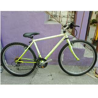 NEUTRON MT. BIKE (FREE DELIVERY AND NEGOTIABLE!)