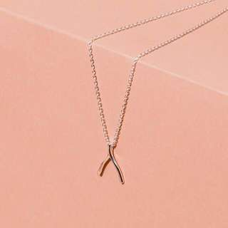 Sterling Forever Wishbone Necklace