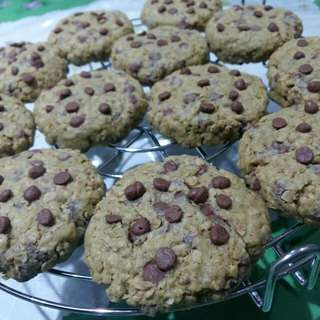 Malunggay Oatmeal chocolate chip cookies(Lactation cookie)