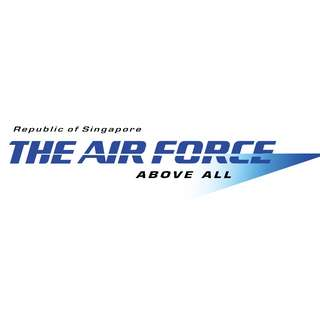 The Republic of Singapore Air Force (RSAF) Military Domain Expert