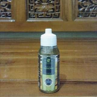 Minyak Zaitun Premium Quality