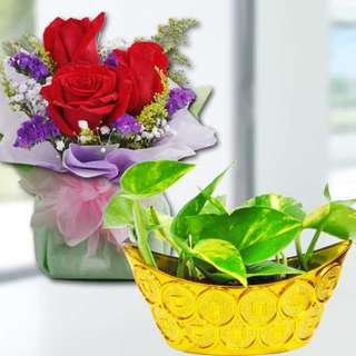 Mini-money Plant & 3 Red Roses Standing Bouquet (069-RR)