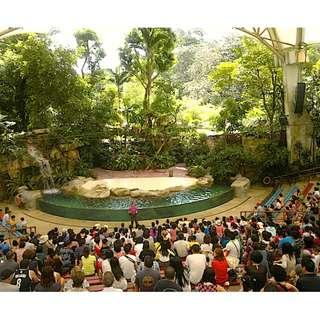Zoo, River Safari, Night Safari, Jurong bird park