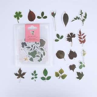 Sticker (Leaves) (Ref No.: 206)