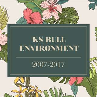 RJC KS Bull Environment Essays