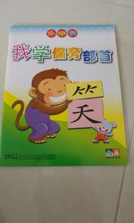 Learning Chinese book