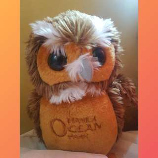 OWL STUFFED TOY