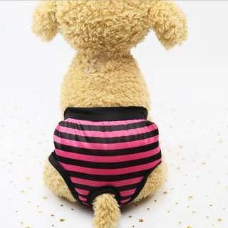 DP雜貨鋪 寵物衣服 條紋鬆緊帶生理褲 貓狗衣服 馬爾濟斯/貴賓/博美/吉娃娃