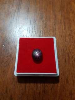 Delima Daging Bintang ( star ruby)